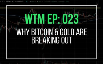 Why Bitcoin & Gold Are Breaking Out (WTM Ep: 023)